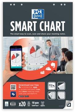 Oxford Smart Chart flipchartblok, ft 65 x 98 cm, pak met 20 vel, geruit